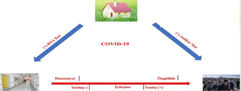 covid 19 laboratuvar